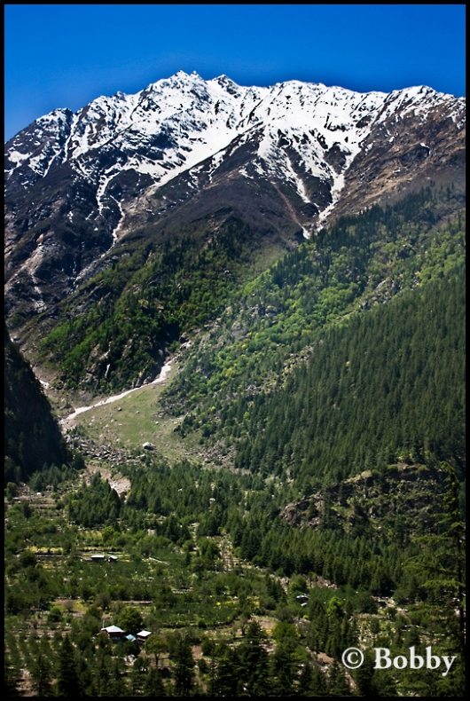 Near Sangla valley.