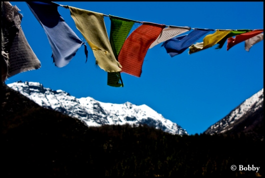 The Prayer flags...