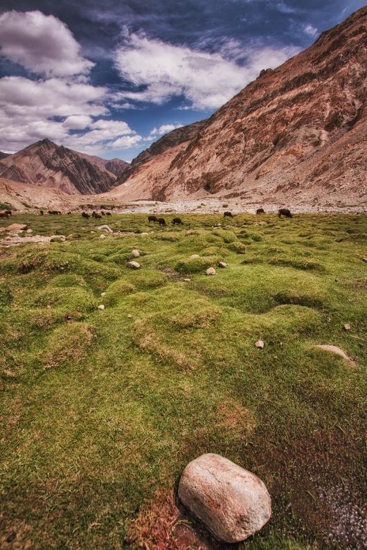 The gorgeous landscapes that adorn the entire region